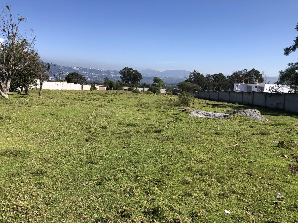 Foto Terreno en Venta en  Tumbaco,  Quito  Tumbaco, a dos cuadras de la Ruta Viva