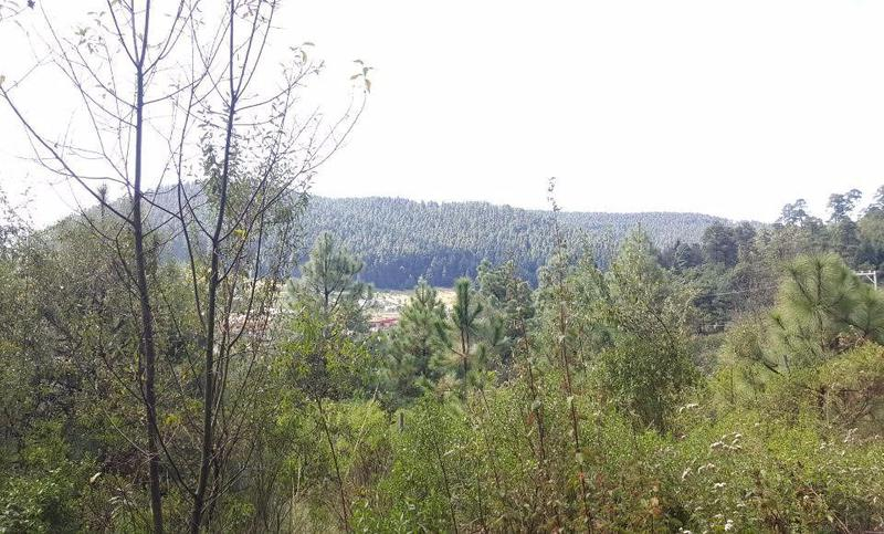 Foto Terreno en Venta en  Llano Capacho,  Lerma  Salazar, Hermoso Terreno Panorámico en Venta.