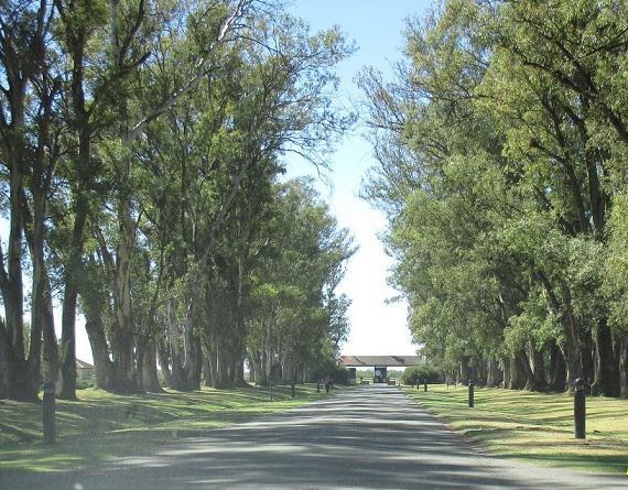 Terreno de 1500 m2 - Kentucky - Club de campo - Funes