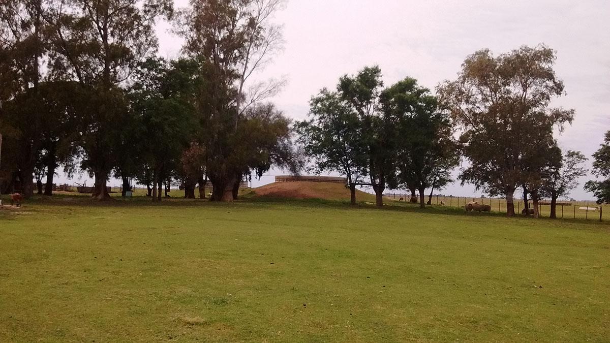 Foto Campo en Venta en  Trenel ,  La Pampa  Campo en Trenel