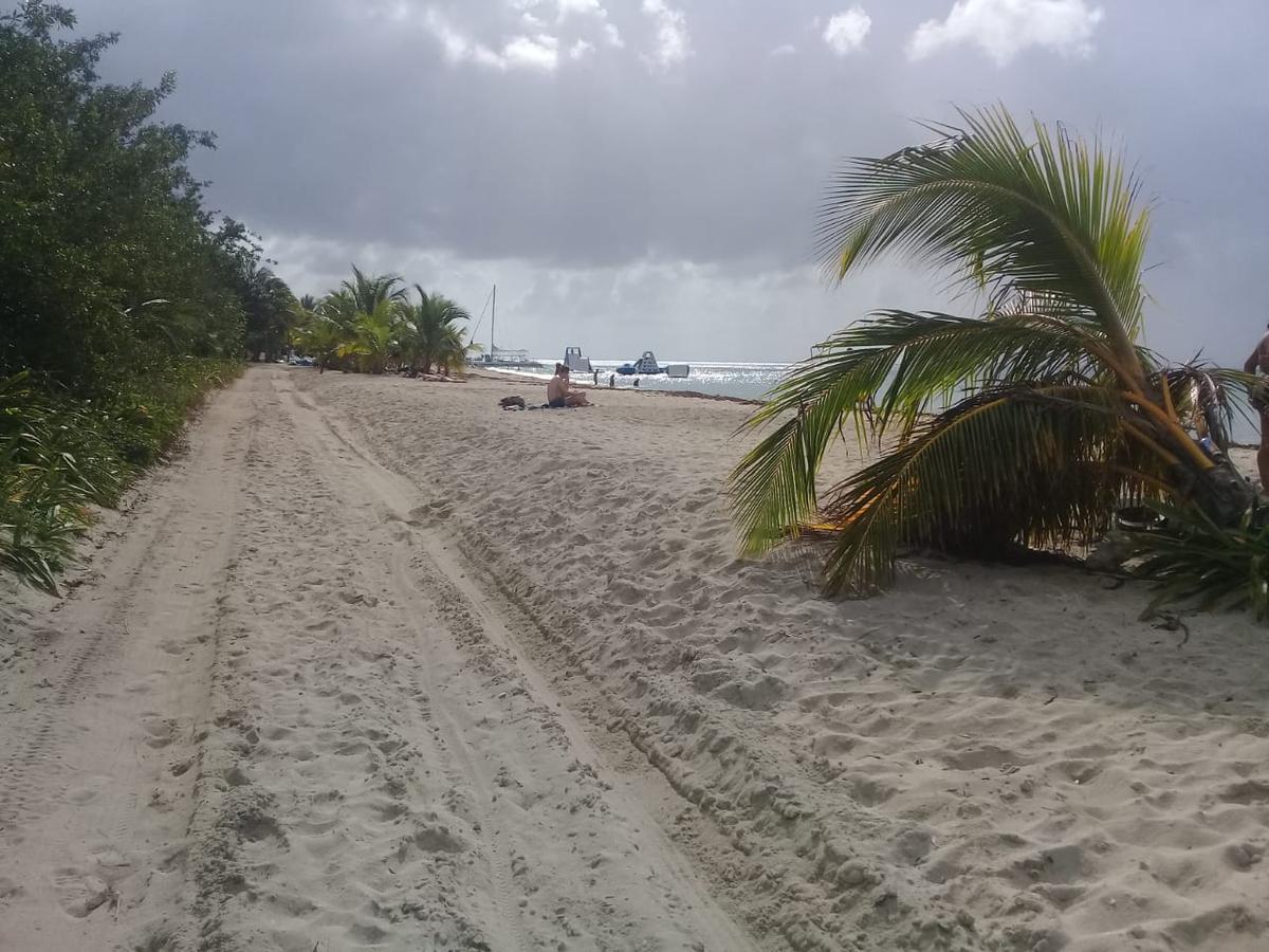 Foto Terreno en Venta en  Zona Hotelera Sur,  Cozumel  Terreno hotelero con playa Cozumel