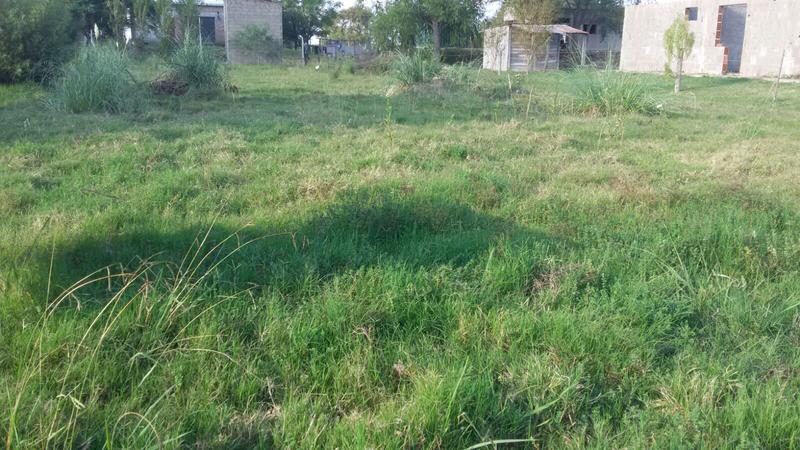 Foto Terreno en Venta en  Nueva Palmira ,  Colonia  Hermos terreno próximo  al río
