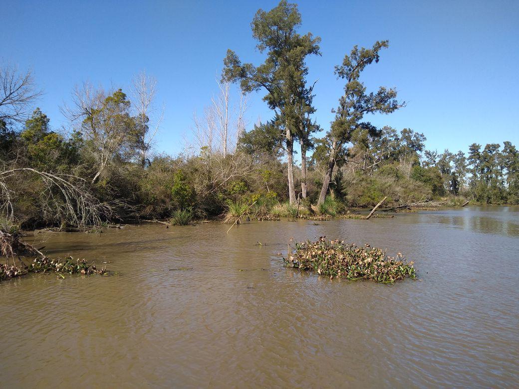 Foto Quinta en Venta en  Caraguata,  Zona Delta Tigre  Caraguatá al 600