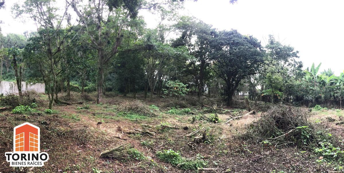 Foto Terreno en Venta en  Coatepec ,  Veracruz  HERMOSO Y AMPLIO TERRENO EN VENTA, CARRETERA ANTIGUA COATEPEC-XALAPA