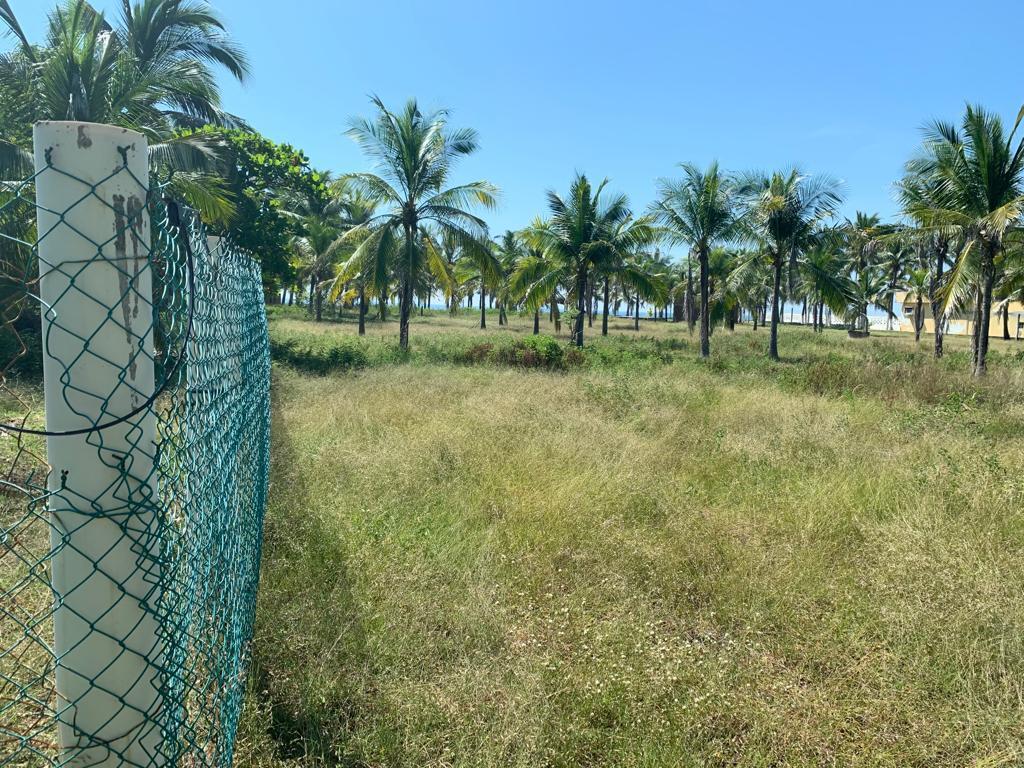 Foto Terreno en Venta en  Coyuca de Benítez ,  Guerrero  Lote#20 Manzana 63 Poblado La Playa Coyuca De Benitez