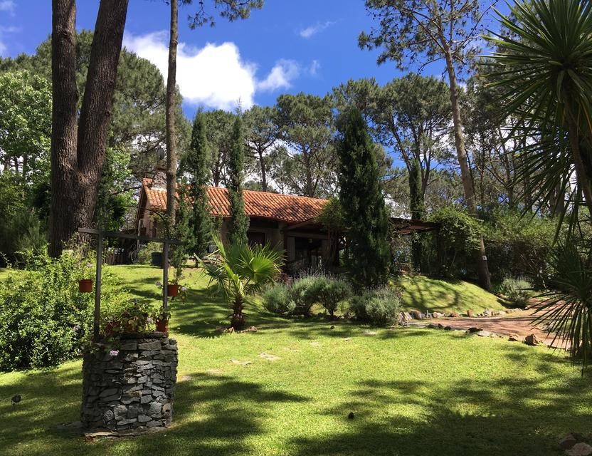 Foto Casa en Venta | Alquiler temporario en  Club del Lago,  Punta Ballena  Club del Lago