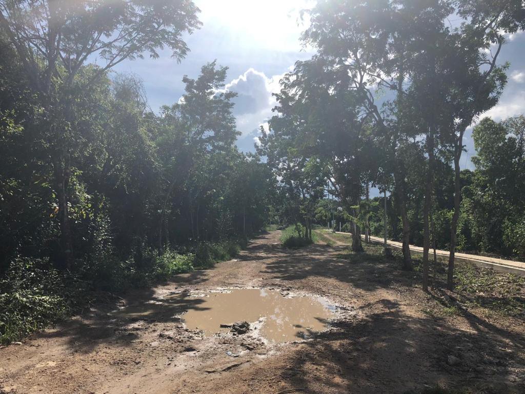 Foto Terreno en Venta en  La Veleta,  Tulum  Terreno en la Veleta Tulum