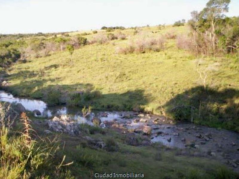 Foto Campo en Venta en  San Carlos ,  Maldonado  Sobre las sierras, manantial, cañada, excelentes vistas