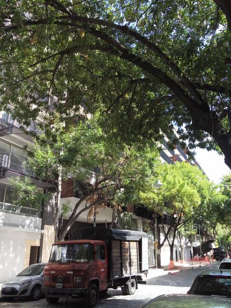 Foto Local en Alquiler en  Palermo Hollywood,  Palermo  Amenabar 23