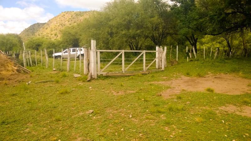 Foto Terreno en Venta en  San Fco Del Monte De Oro,  Ayacucho  San Fco del Monte de Oro Lote 4.488,40 m2