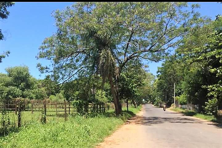 Foto Terreno en Venta en  Luque,  Luque  Ruta Gral. Aquino cerca de Ferretería Lincoln y Camino viejo a Luque