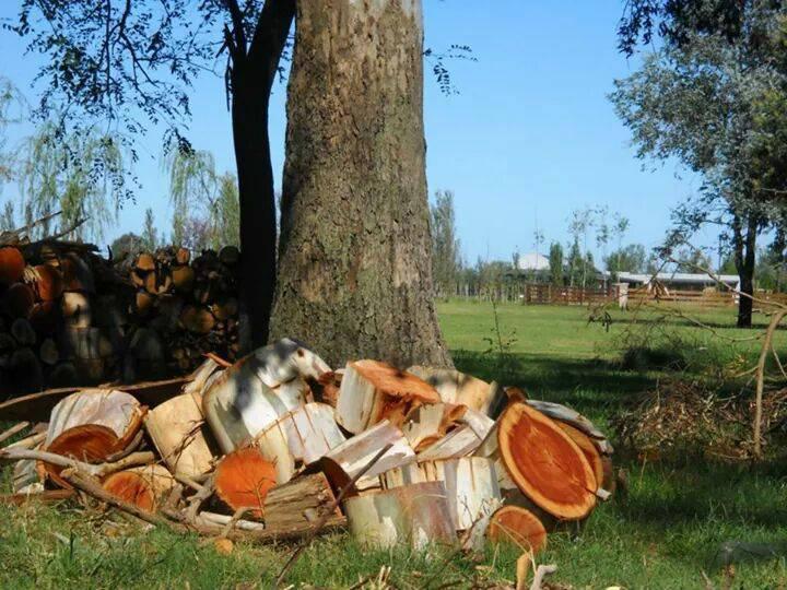 Foto Chacra en Venta en  Loma Escondida,  Countries/B.Cerrado (Lujan)  Loma Escondida