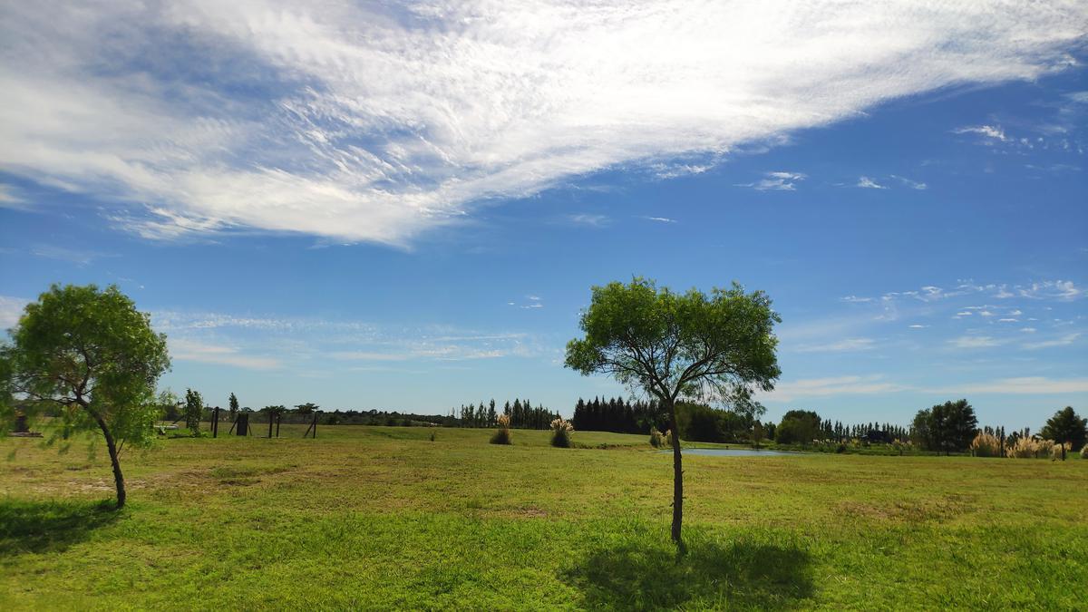 Foto Terreno en Venta en  Los Cardales,  Exaltacion De La Cruz  Los Cardales
