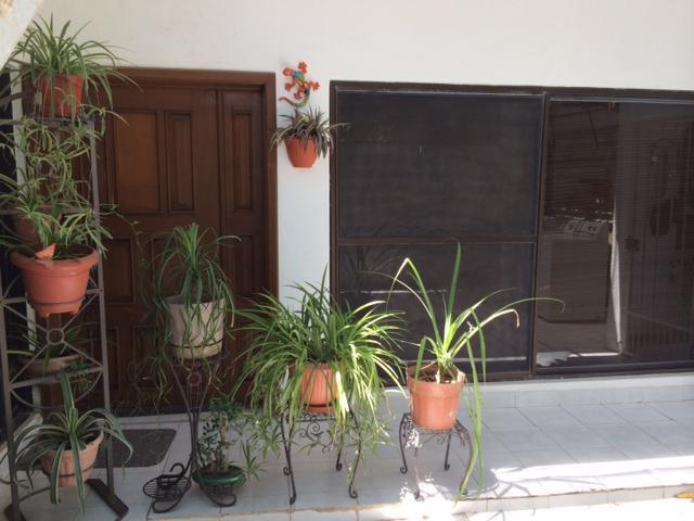 Foto Departamento en Renta en  Indeco,  La Paz  Tamarindo