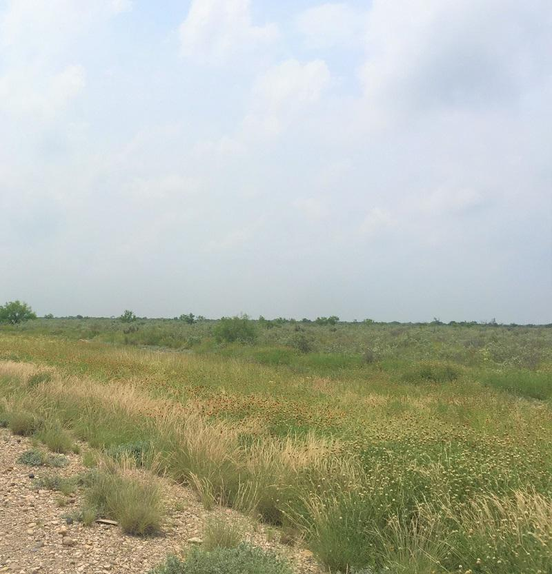 Foto Terreno en Venta en  Piedras Negras ,  Coahuila  Terreno en venta  San Isidro, Coahuila
