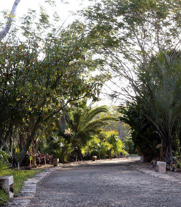 Foto Terreno en Venta en  Pueblo Temozon Norte,  Mérida  Terreno en Cabo Norte (LICATA) 762 m2.
