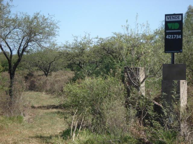 Foto Campo en Venta en  Colon,  Colon  Ruta 14 Frente a entrada Hughes