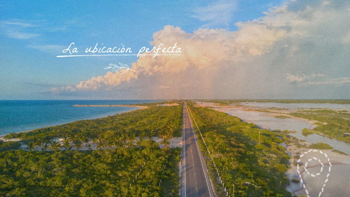 Foto Terreno en Venta en  Pueblo San Crisanto,  Sinanché  Terreno Residencial en Venta, Playa San Crisanto, Yucatán, Experiencia Komunah