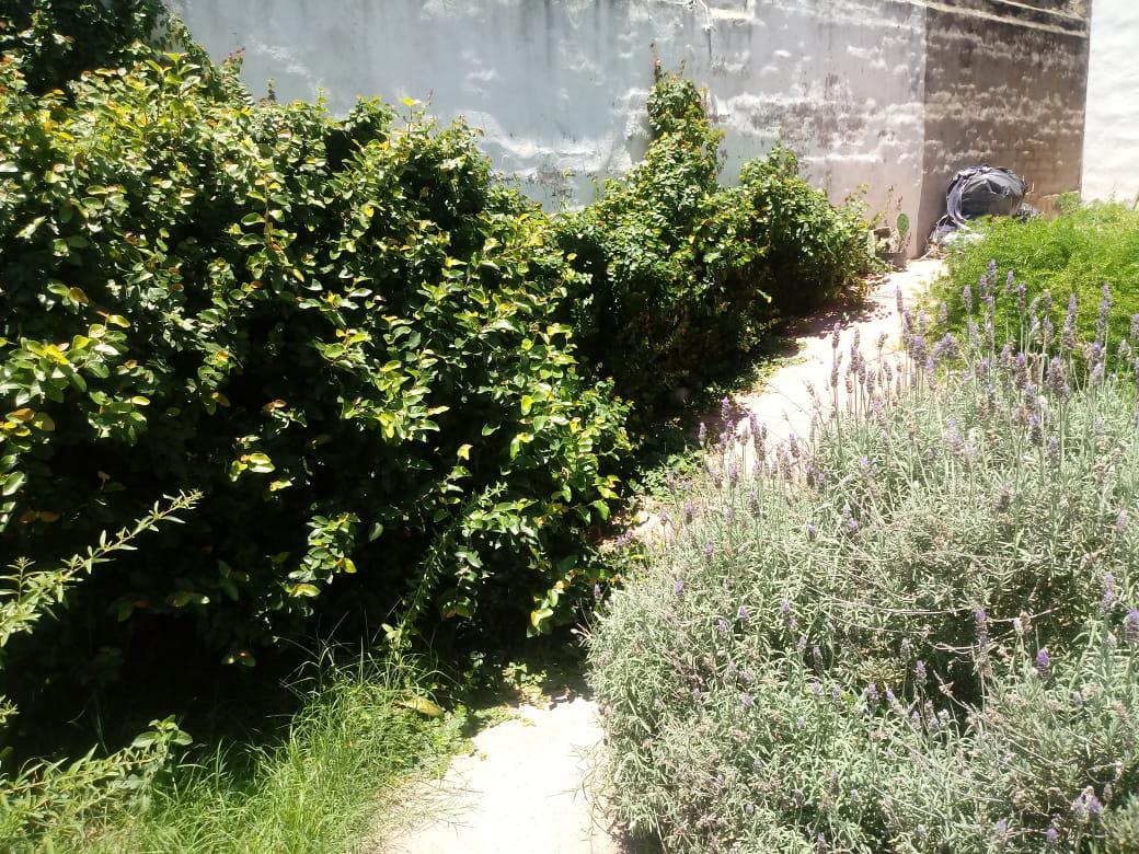 Foto Casa en Venta en  Alto Alberdi,  Cordoba  La Rioja 3400. Alto Alberdi
