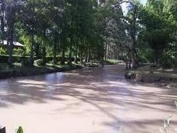 Foto Isla en Venta en  Tigre ,  G.B.A. Zona Norte  Arroyo Toro 1ra Secc al 2600