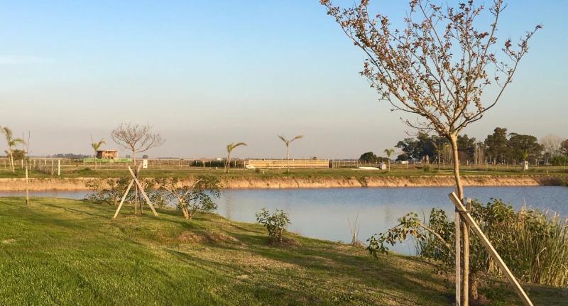 Foto Terreno en Venta    en  Countries/B.Cerrado (La Plata),  La Plata  Campos de la Enriqueta - Ruta 2 Km. 65