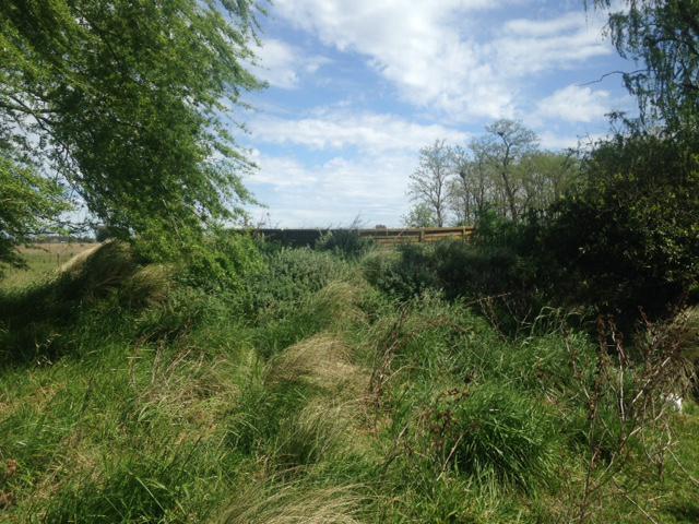 Foto Campo en Venta en  Las Flores,  Las Flores  A 7 km RN3 y ciudad