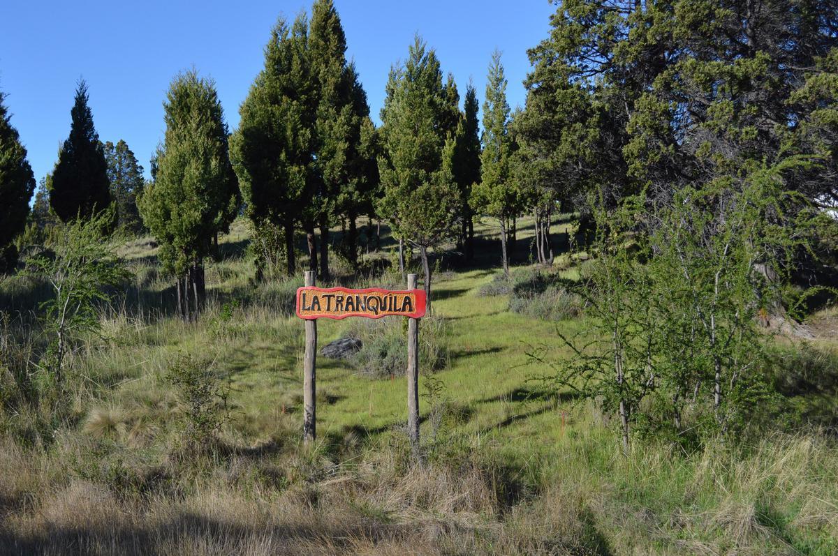 Foto Chacra en Venta en  Trevelin,  Futaleufu  Callejón Benjamín Evans
