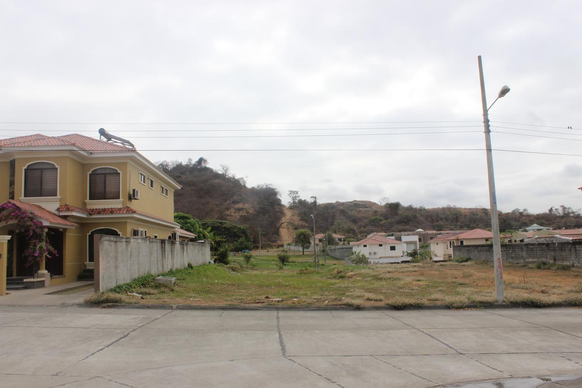 Foto Terreno en Venta en  Samborondón ,  Guayas  Km. 14.5 Ave. León Febres Cordero