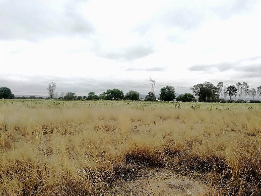 Foto Terreno en Venta en  Rancho o rancheria Santa Matilde,  San Juan del Río  VENTA DE TERRENO SAN JUAN DEL RIO QUERETARO