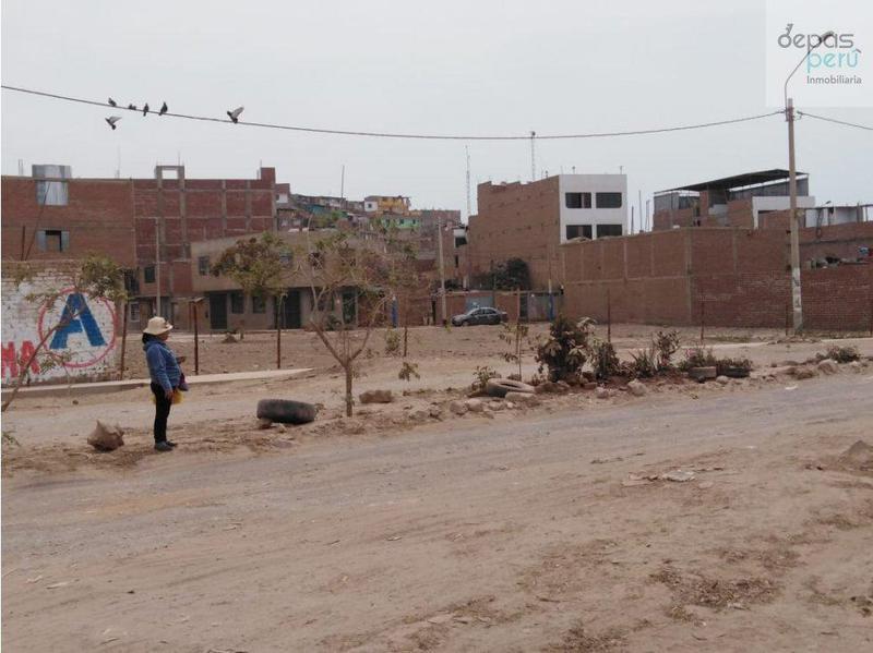 Foto Terreno en Venta en  San Martín de Porres,  Lima  calle los algarrobos