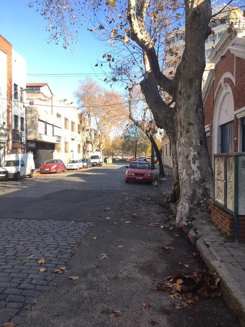 Foto Terreno en Venta en  Aguada ,  Montevideo  Aguada
