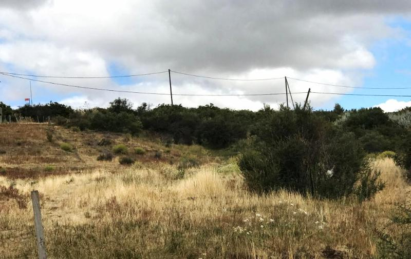 Foto Terreno en Venta en  Ñirihuao Estacion Fcgr,  Pilcaniyeu  ÑIRIHUAU