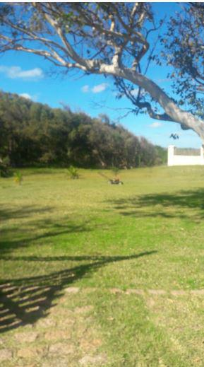 Foto Terreno en Venta en  Bella Vista ,  Maldonado  Bella Vista