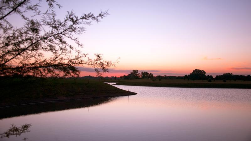 Foto Terreno en Venta en  La Providencia,  Countries/B.Cerrado (Ezeiza)  Venta - Lote al lago con proyecto aprobado en La Providencia