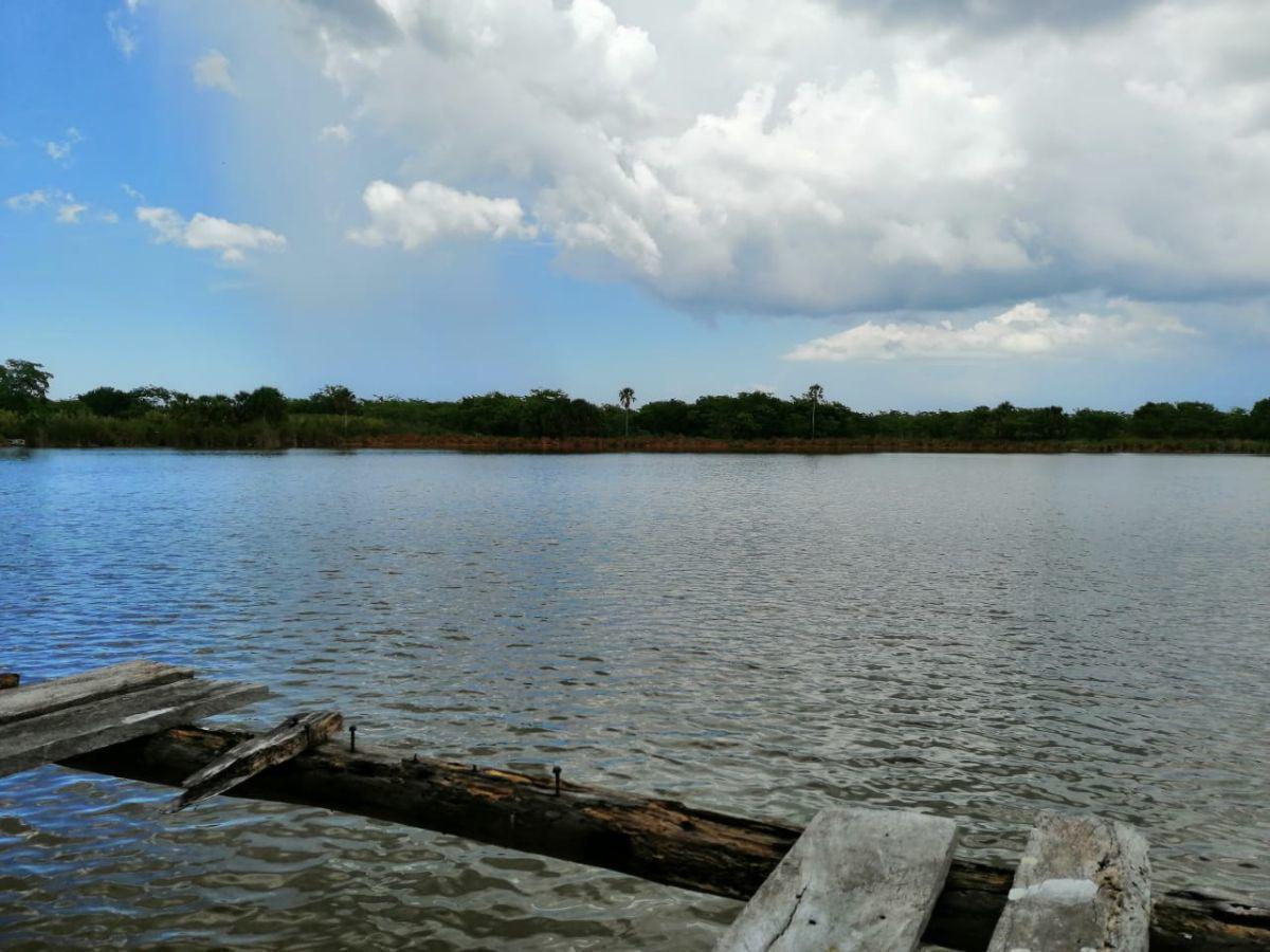 Foto Terreno en Venta en  Pueblo Dzilam de Bravo,  Dzilam de Bravo  En venta terrenos con lagunas y cenotes en Dzilam del Bravo, Yuc., Méx.