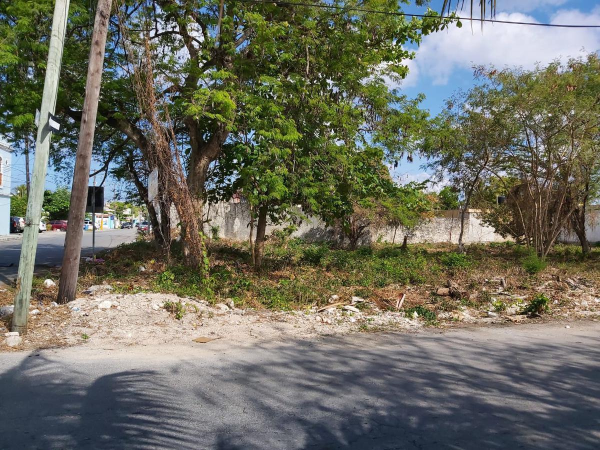 Foto Terreno en Venta en  Cozumel ,  Quintana Roo  Terreno Flores Magón, Fracción 2 - Calle Adolfo Rosado Salas esq con 80 Av