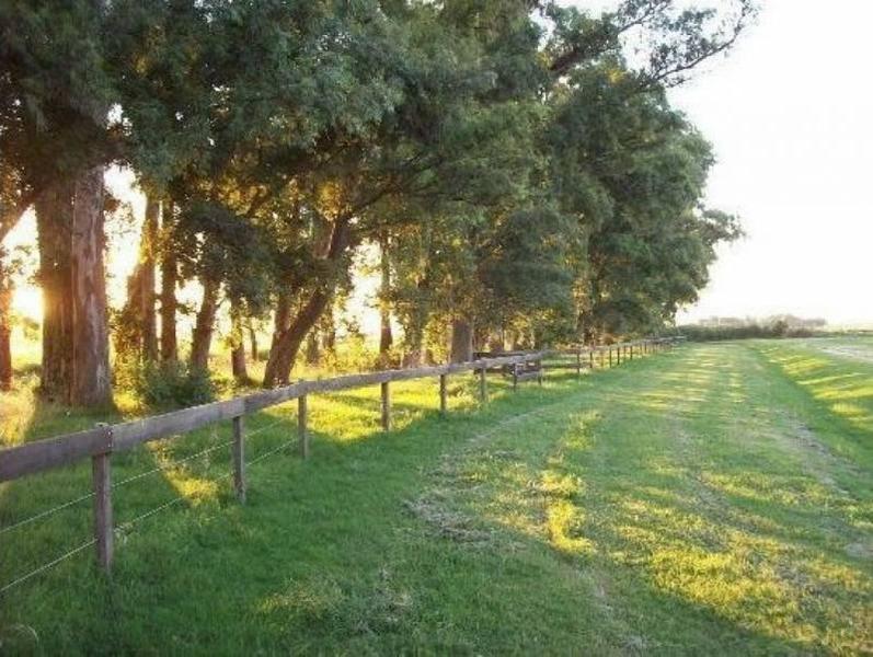Foto Chacra en Venta en  Cañuelas,  Cañuelas  Ruta 205 100