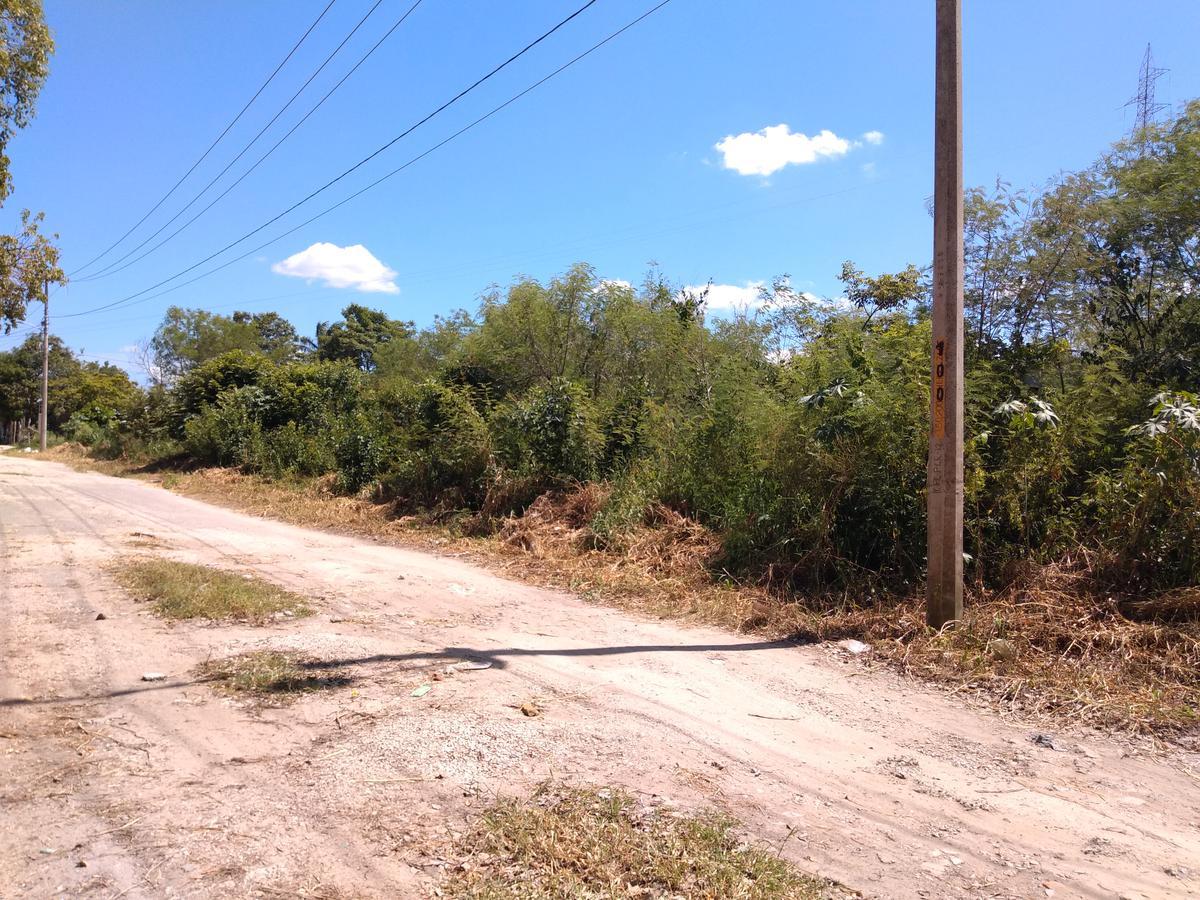 Foto Terreno en Venta en  Centla ,  Tabasco  Frontera