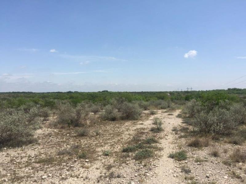 Foto Terreno en Venta en  Nava ,  Coahuila    Rancho en venta atras de union gananera regional