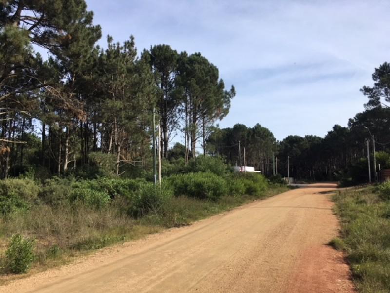 Foto Terreno en Venta en  Parque Burnett,  Maldonado  Parque Burnett