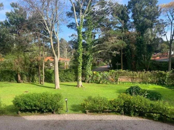 Foto Apartamento en Venta en  Cantegril,  Punta del Este  Apto en Cantegril