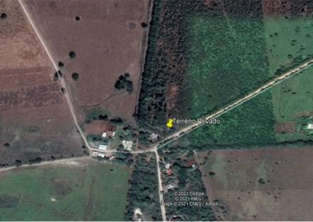 Foto Terreno en Venta en  Rancho o rancheria Reventadero,  Pánuco  Tancoco, Cong. Reventadero, Panuco, Ver.