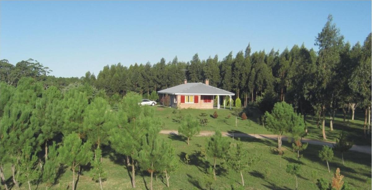 Foto Campo en Venta en  Rocha ,  Rocha  Cabo Polonio
