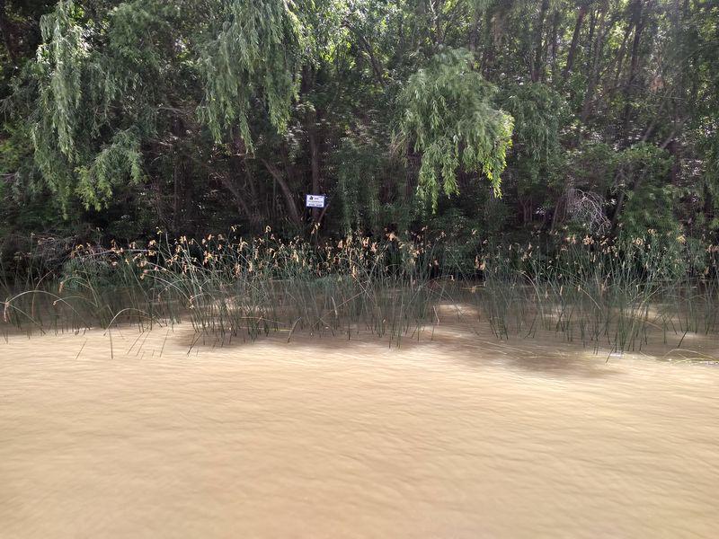 Foto Quinta en Venta en  Canal del Este,  Zona Delta Tigre  Canal del Este