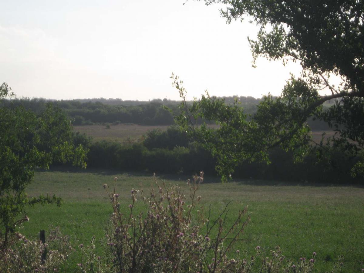 Foto Campo en Venta en  Cerros De San Juan ,  Colonia  Cerros De San Juan