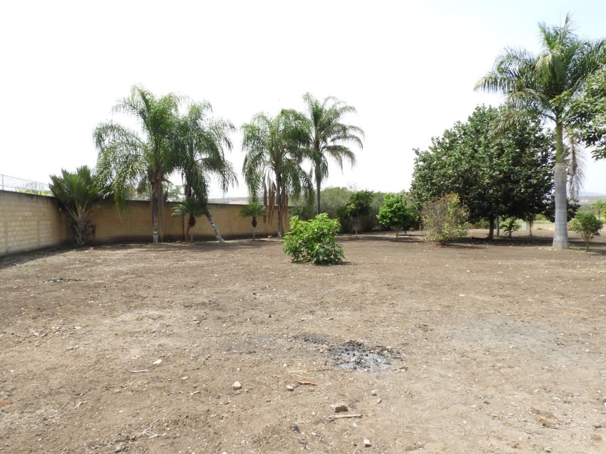 Foto Terreno en Venta en  Puente de Ixtla Centro,  Puente de Ixtla  Venta de terreno en el Centro de Puente de Ixtla, Morelos…Clave 3093