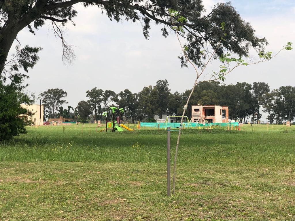 Foto Terreno en Venta en  Santa Elena ,  Pilar Del Este  Pilar