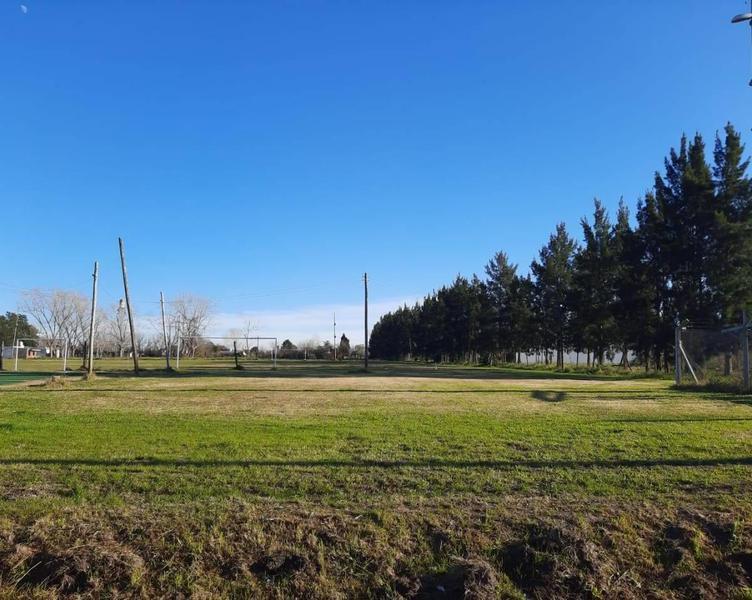 Foto Terreno en Venta en  La Plata,  La Plata  142 Entre 36 y 37