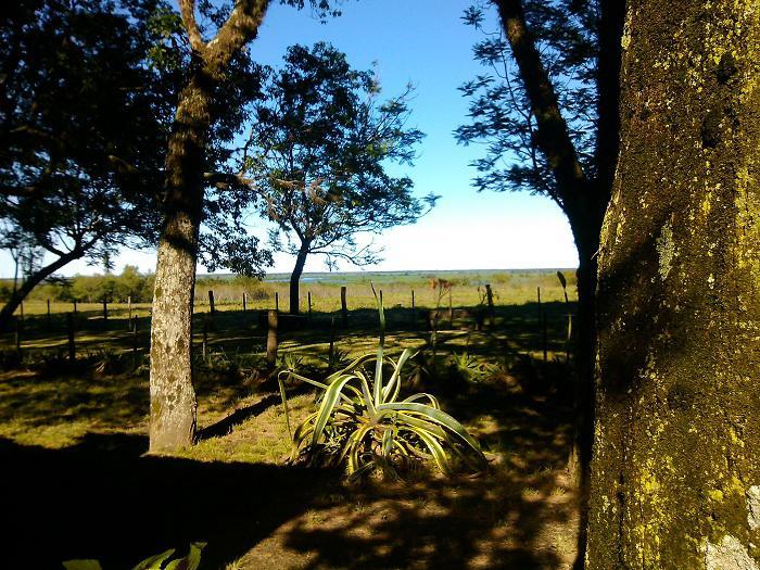 Foto Fondo de Comercio en Venta en  Esquina,  Esquina  Esquina / Corrientes