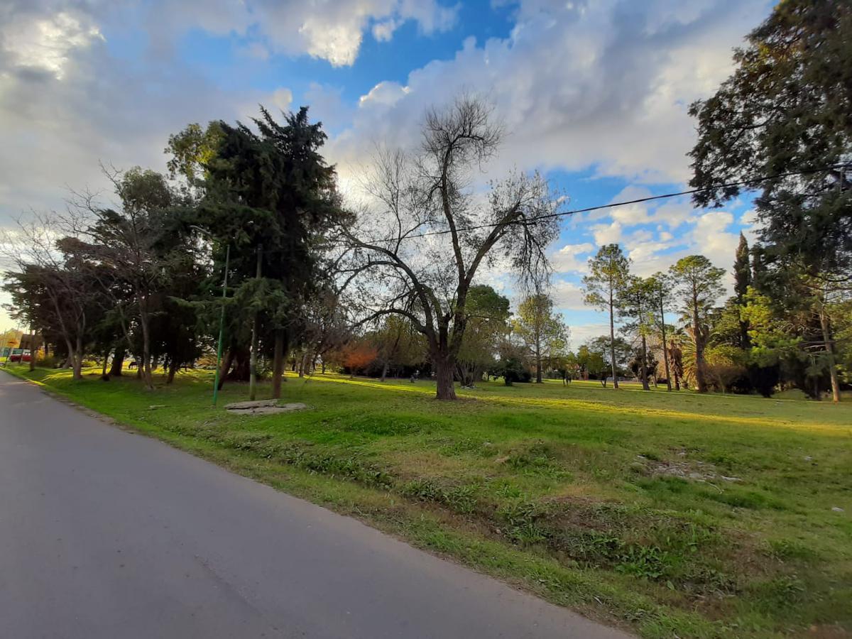 Foto Terreno en Venta en  Joaquin Gorina,  La Plata  487 entre 137 y 138. Quintas de Marquez